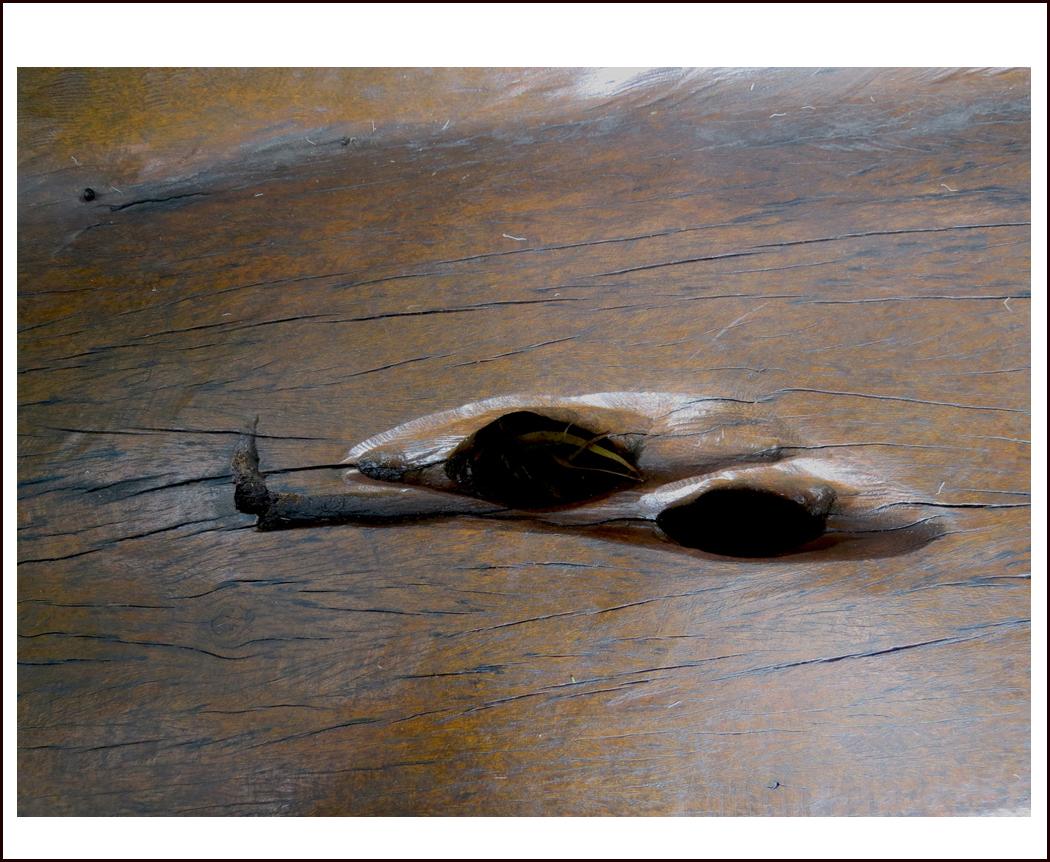 Paisagem suspensa - Imersão nos bancos de madeira do Inhotim.